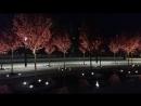 Ночной Краснодар, стадион (2018.04.27_202026)