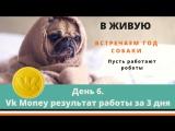 Часть 4. День 6. Vk Money работает. Результат работы Вкмани за 3 суток