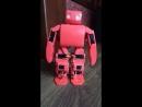 VIVI Robot