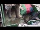 Видео подборка приколов случай на рыбалке