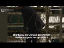 Bitcoin фермы Китая_ взгляд изнутри _ BitNovosti