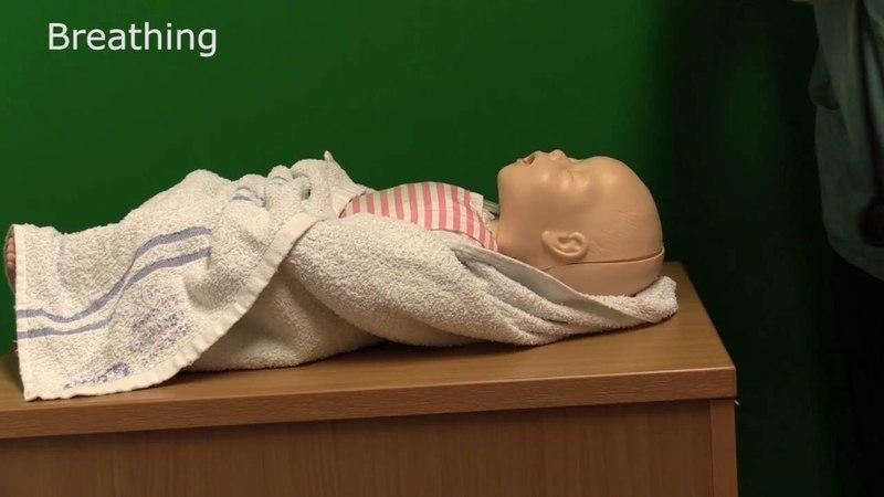 Neonatal Resuscitation - Demonstration