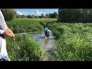 Переправа через болото live