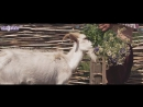 Сомбел Билалова - 'Сайра, былбыл' - HD 1080p.mp4
