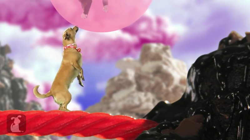 Katy Perry - California Gurls (ft Snoop Dog) - Katy Puppy - California Grrrs Wide Awoof