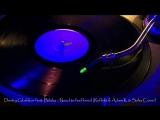 Dmitry Glushkov feat. Bibika - Need to feel loved (Reflekt Adam K Soha Cover)