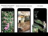 Focos App