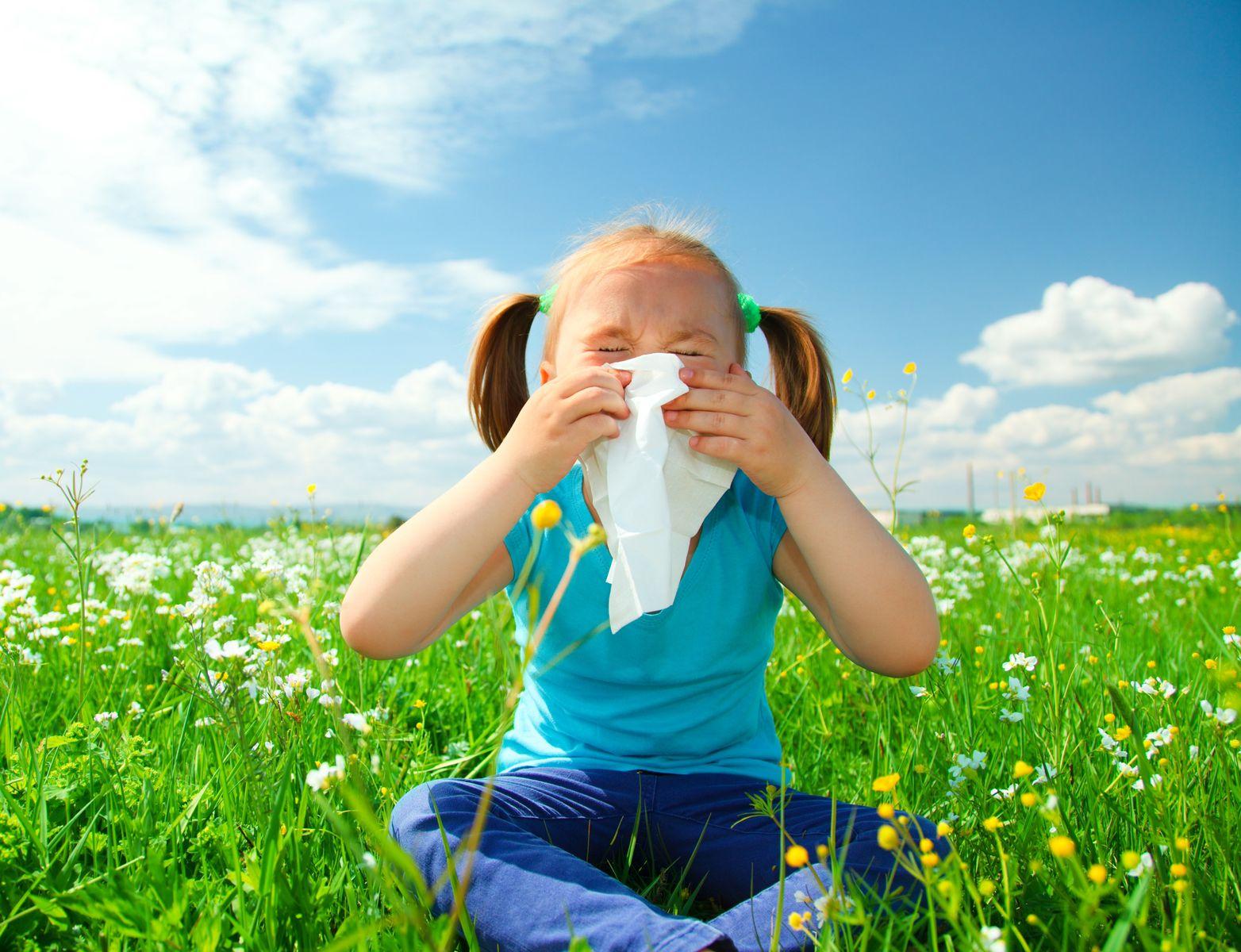 Статья - Суть аллергии