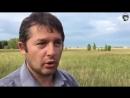 Китайские колонии разрастаются в Омской области
