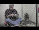 Ветеринар позавтракал в клетке с испуганной и брошенной собакой чтобы успокоить её