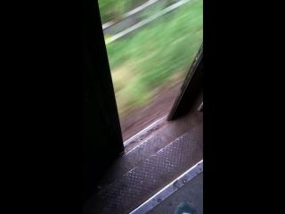 Відкриті двері в поїзді ЛЬВІВ--МОСТИСЬКА2.