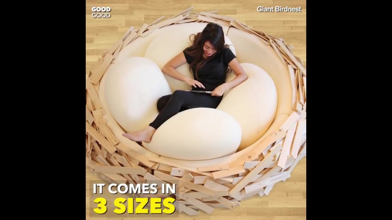A giant bird's nest for humans!