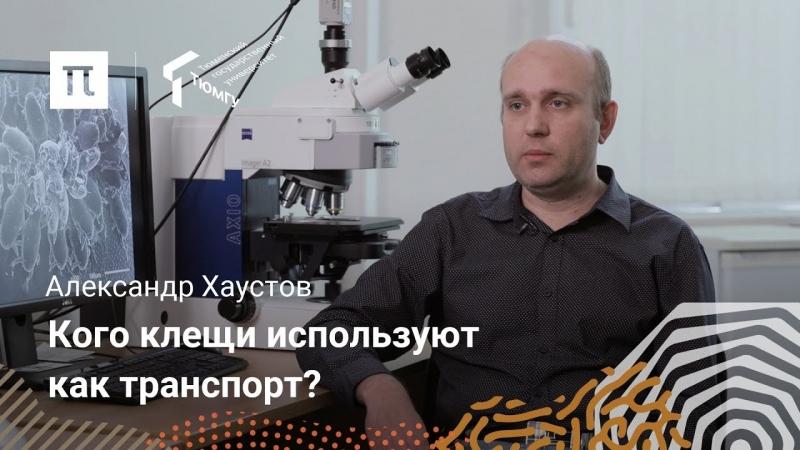 Разнообразие клещей — Александр Хаустов