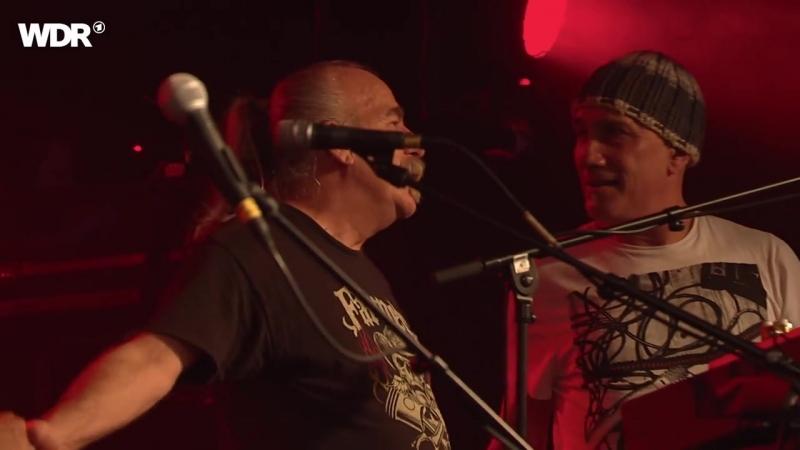 Gov't Mule (Live 2017 HD)