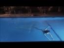 Stephanie Chao Nude Swim