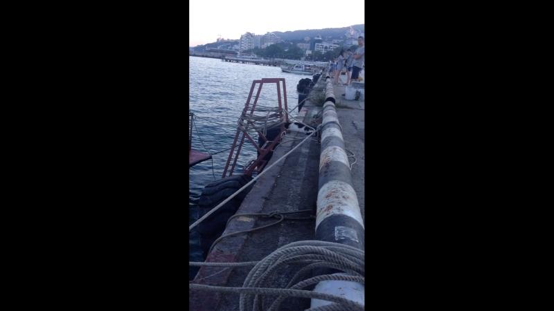 Ялтинский прохиндей ждёт рыбу