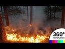 Десятки гектаров горящего леса в Крыму