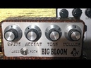 Hermida ZenDrive 2 vs Big Bloom Amplified Nation Dumble Style Pedals