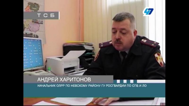 ТК 47 канал - Житель Невского района добровольно сдал в отдел лицензионно-разрешительной работы охотничьи боеприпасы