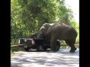 Наглый грабитель беспределит на дороге!