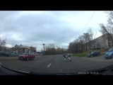 Аисты устроили драку на дороге в Минске