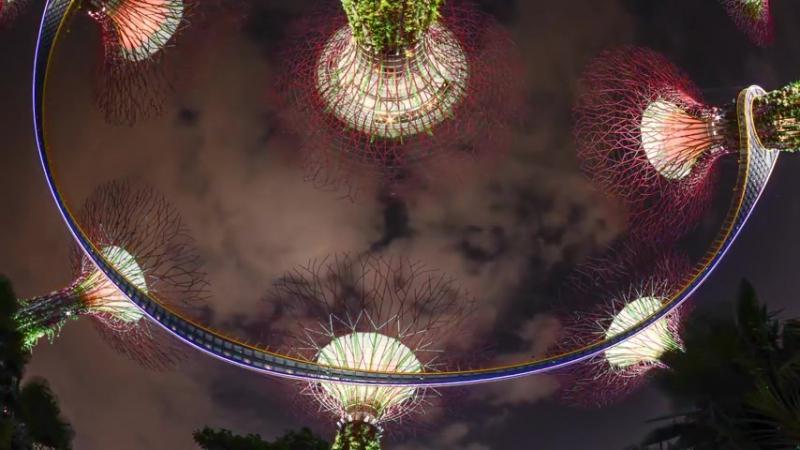 Ночной город (государство) Сингапур в 4К