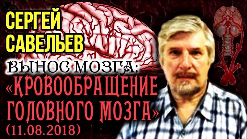 «ВЫНОС МОЗГА 51»: «Кровообращение головного мозга». 11.08.2018. Савельев С.В.