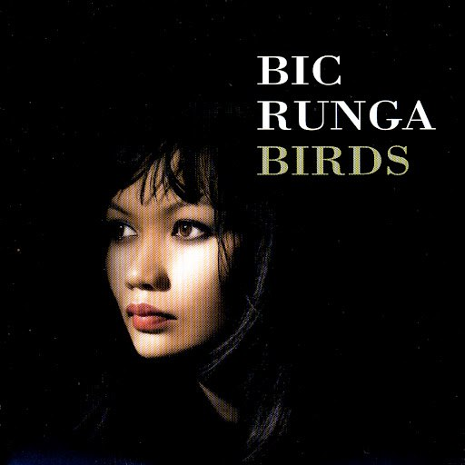 Bic Runga альбом Birds