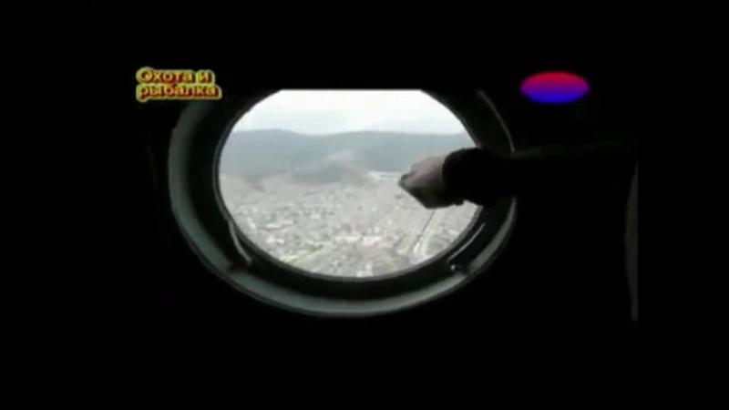 Дагестанский Тур , Горные Козлы
