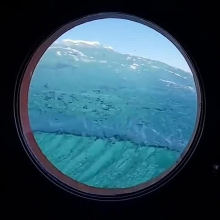 Ocean? Bloom? Portal?