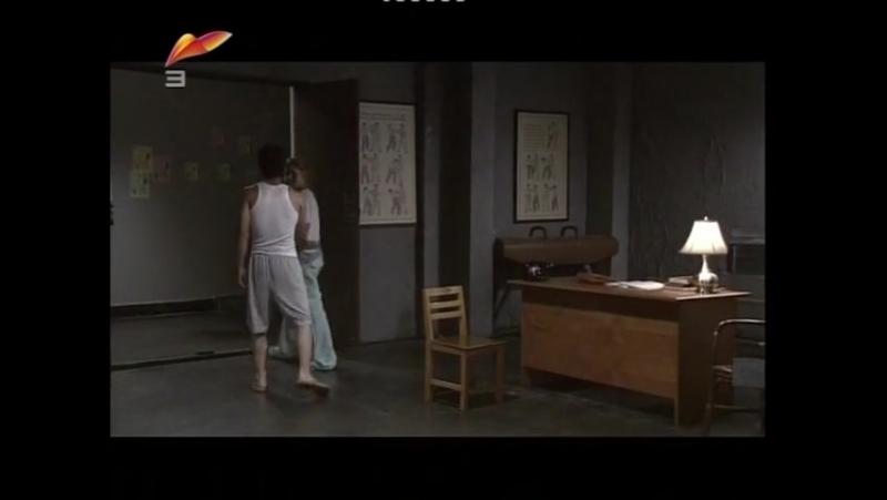Ли Шяулуң (Брюс Ли) 28-бөлім