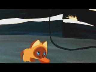 Котёнок по имени Гав - котлета