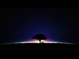 The Dark Night [4k]