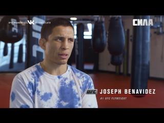 UFC 225  Joseph Benavidez Returns
