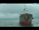 10 02 18 Не получилось… ⠀ Следователи возбудили уголовное дело в отношении учредителя камчатской рыбодобывающей компании пыт