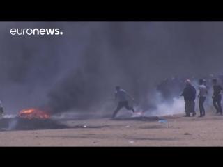 7 палестинцев застрелены израильскими военными на границе сектора Газа