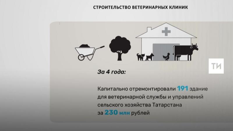 Строительство ветеринарных клиник в Татарстане