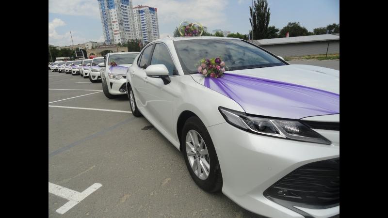 НОВИНКА 2018 Свадебный кортеж Toyota Camry NEW в любой район Волгограда. Автомобили и свадебные украшения прокат