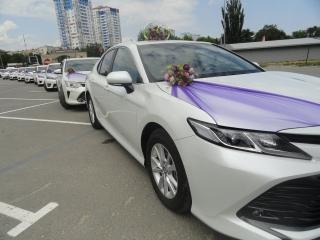Новинка 2018!!! свадебный кортеж toyota camry new в любой район волгограда. автомобили и свадебные украшения прокат