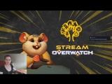 Стримим пушистого всадника апокалипсиса на тестовых серверах Overwatch