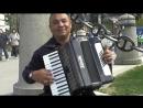 Уличные музыканты. 'Аккордеон - виртуоз' - Мадрид - street