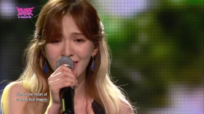 뮤직뱅크 Music Bank - Beautiful Seed - 레드벨벳 웬디 (Beautiful Seed - WENDY).20170815