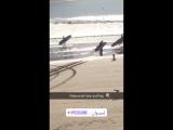 Papa noel love surfing