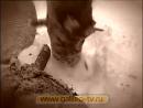 Галилео. Пеллеты online-video-cutter 1