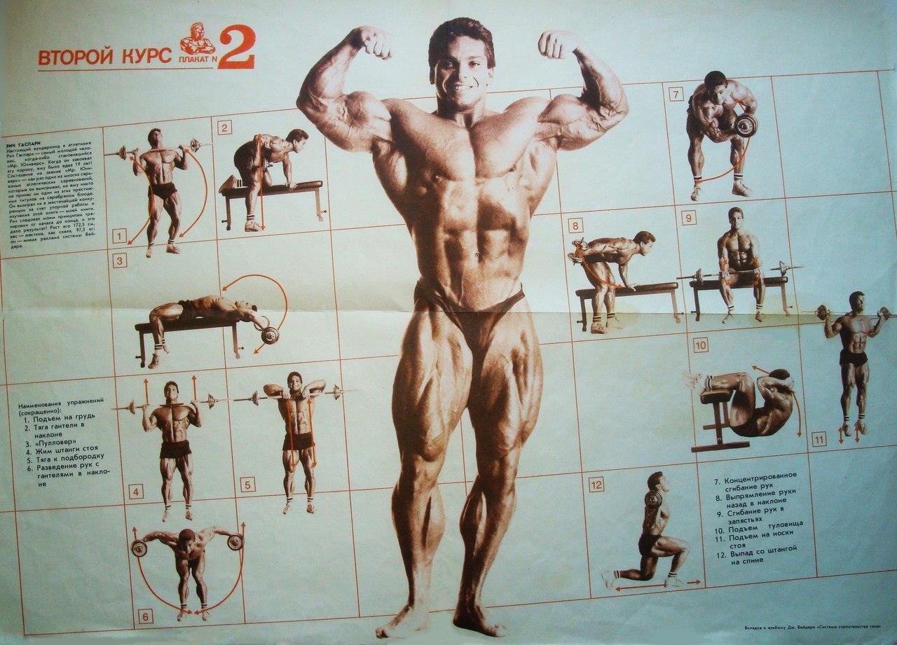 упражнения в картинках по бодибилдингу и фитнесу воздухе, прожить