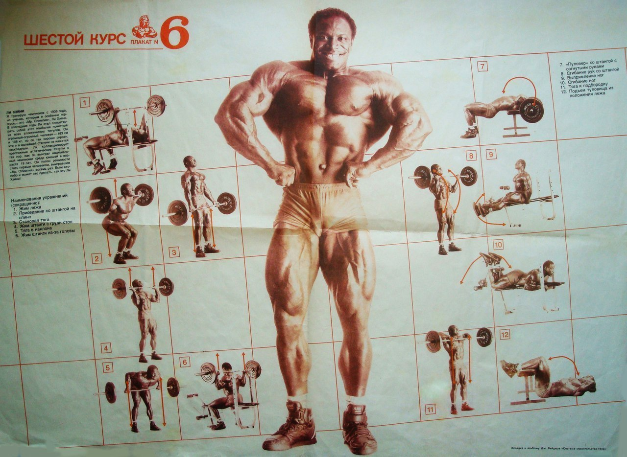 упражнения в картинках по бодибилдингу и фитнесу этого, продукт может