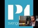 Jimmie Åkesson om Alternativ för Sverige