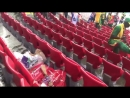 Senegal fans cleaning their section before leaving the stadium after an historic victory.   Class act!
