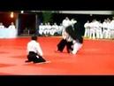 Aikido Démonstration FFAAA Bruno Gonzalez Kagami Biraki FFJDA janvier 2014