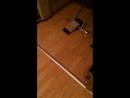 Реакция на робот-пылесос